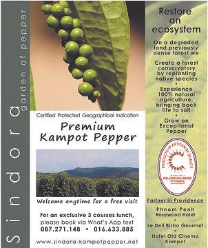 premium pepper kampot