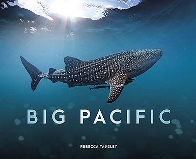 Big Pacific_smaller.jpg