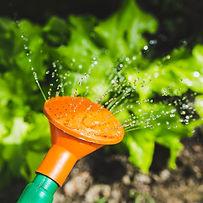 Sprinkler systems el cajon