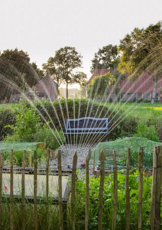 Sprinklers-El-Cajon.jpg