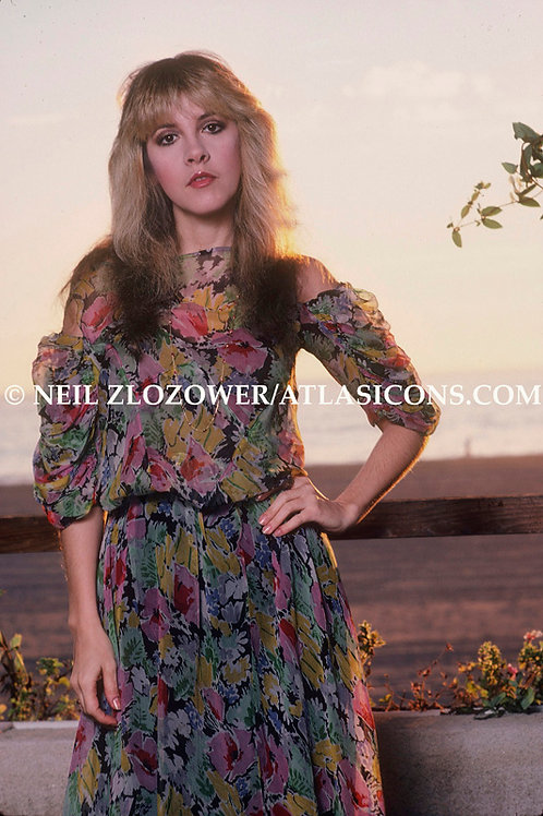 Stevie Nicks-002