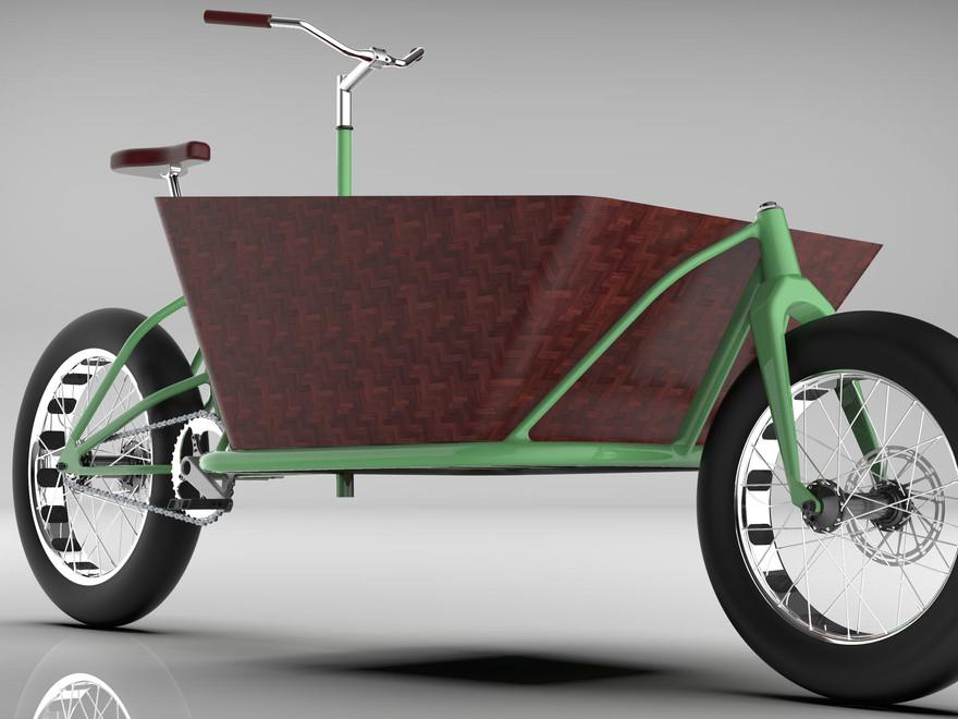 Cargo Bike.3.jpg