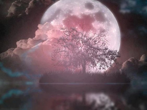 Full Moon Update: Pink Moon in Libra