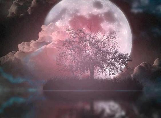 Full Moon Update: Pink Moon in Libra