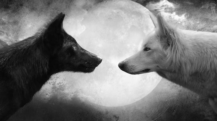 Full Moon Update + Vernal Equinox: Libra