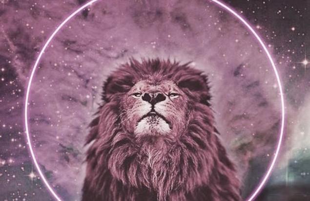 New Moon Update: Leo