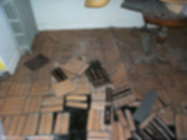 Pencillium-on-water-damaged-wood-flooring