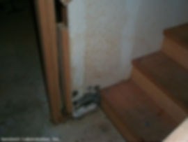 picture of Stachybotrys-on-painted-drywall-surface