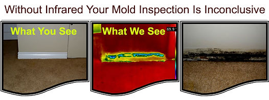 thermal camera finds hidden mold