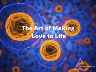 The Art of Making Love to Life small thu
