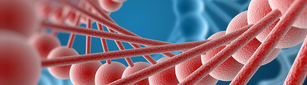 DNA Clearing website header.png