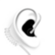 Clear_Tube_Radio_Adapter_Ear_Image__9074