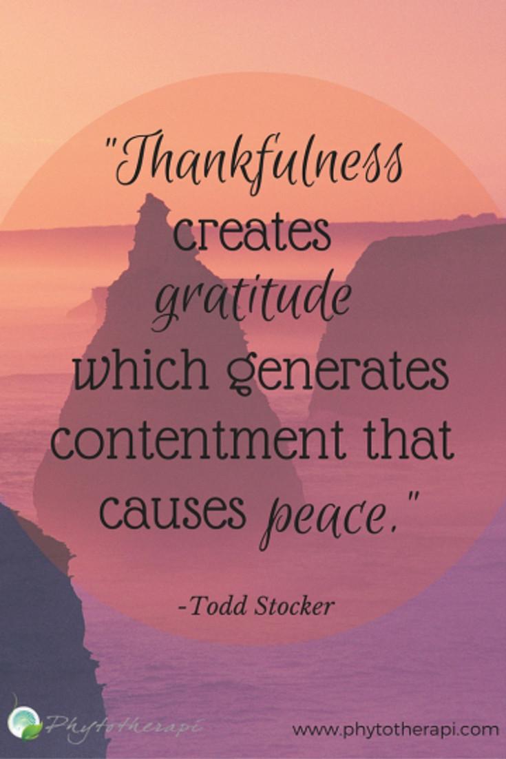 """Thankfulness creates gratitude.--LARGE"