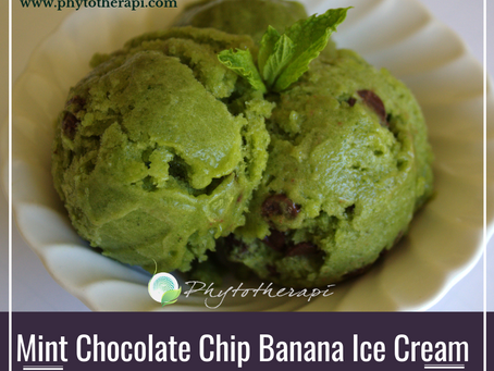 Mint Chocolate Chip Banana Ice Cream