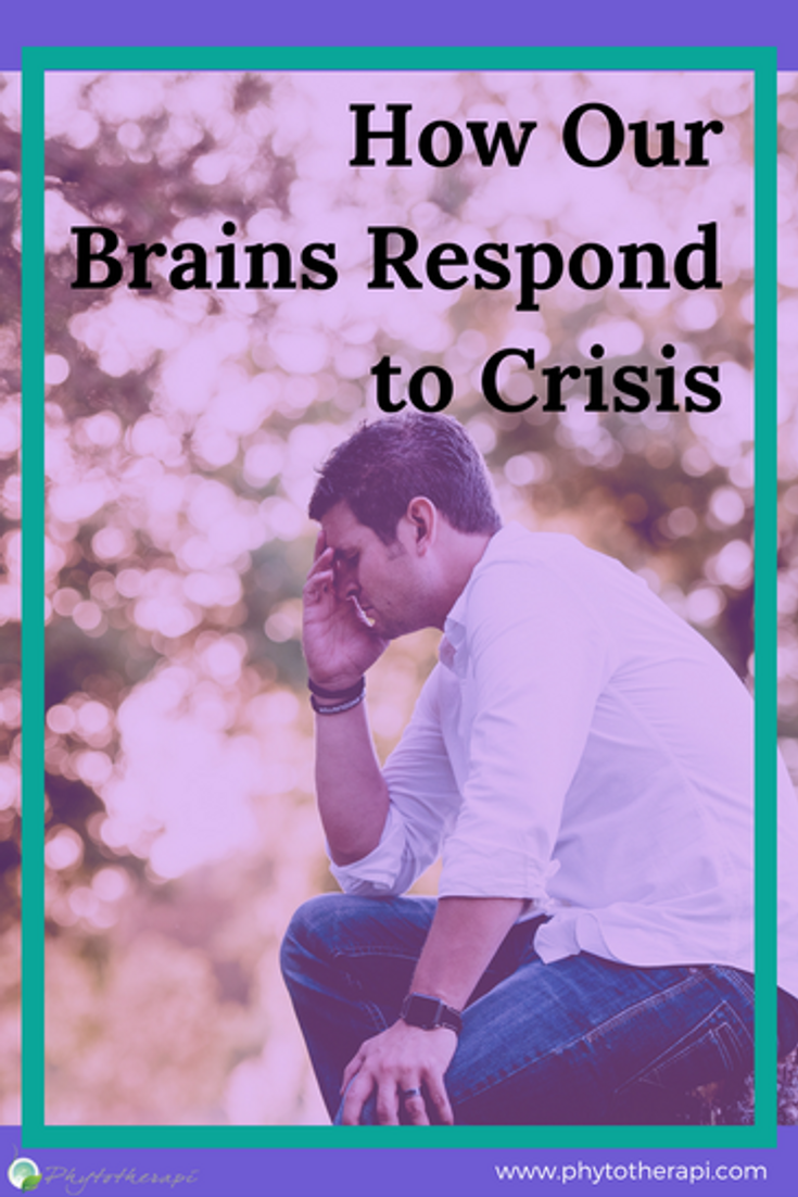 Crisis Blog Cover