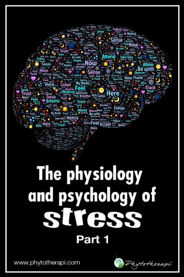 P&P of Stress