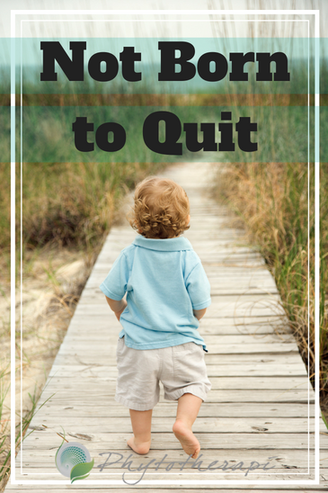 Not Born to Quit Blog Cover (1).png