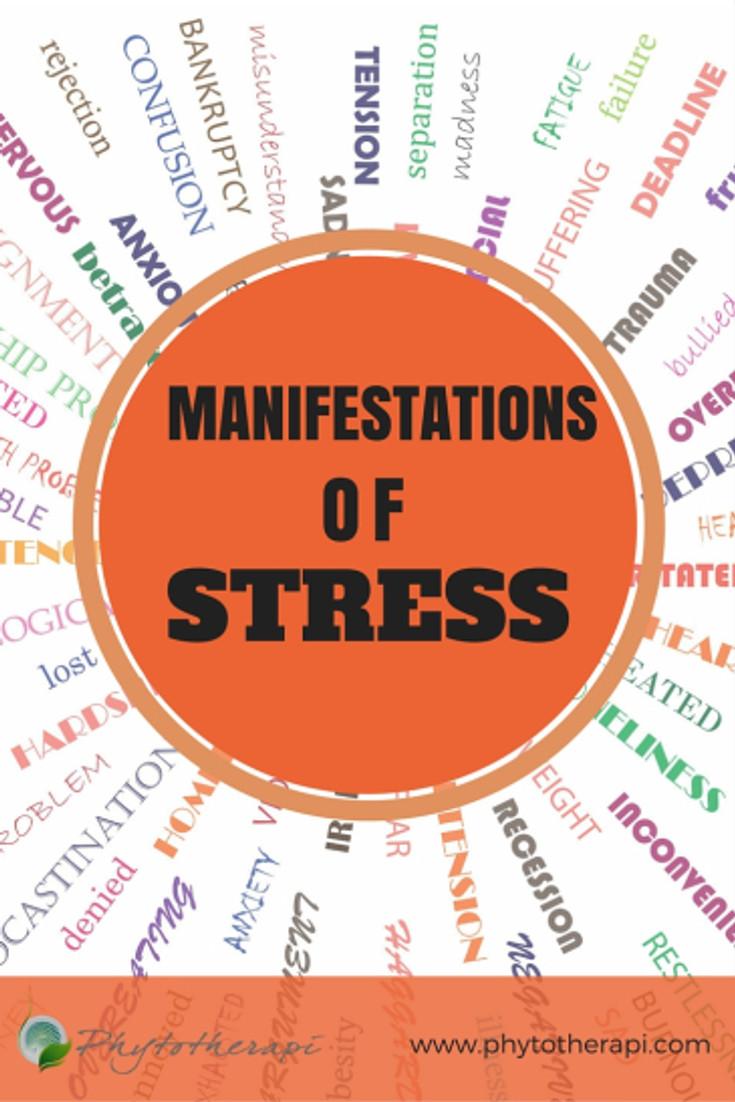 Manifestations of Stress (2)