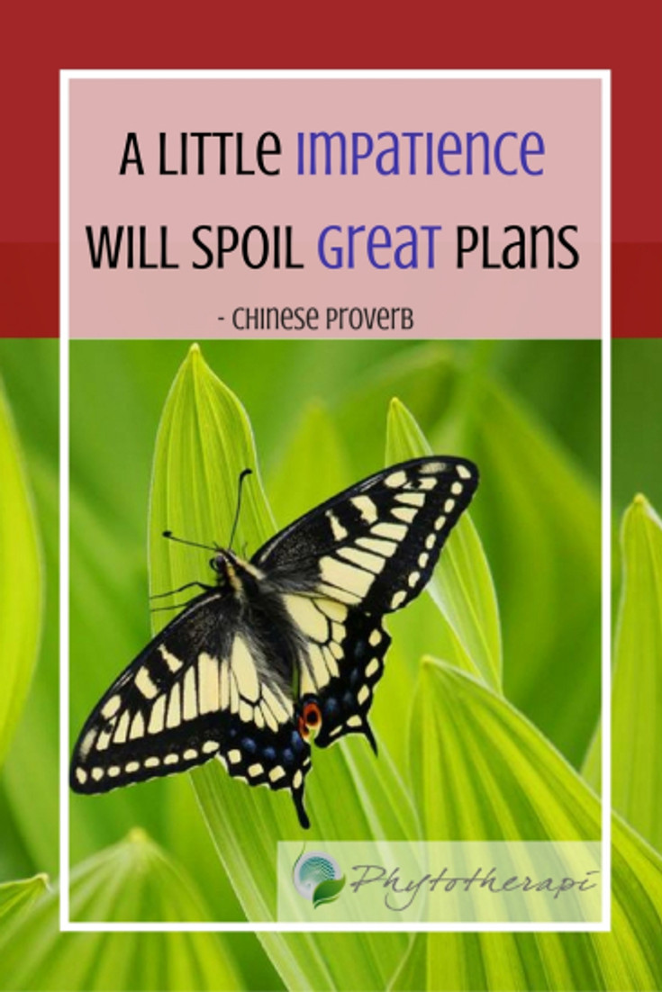 A little impatience will spoil great plans