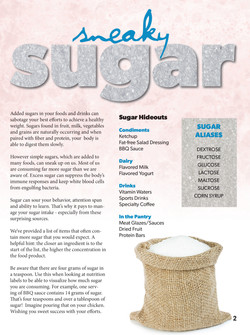 Sugar Article