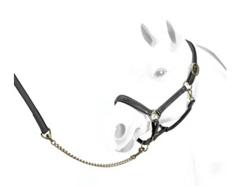 Leather Halter with fancy stitching, Black, XF