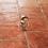 Thumbnail: Ασημένιο δαχτυλίδι με Κορνεόλιο και Αχάτη  D78