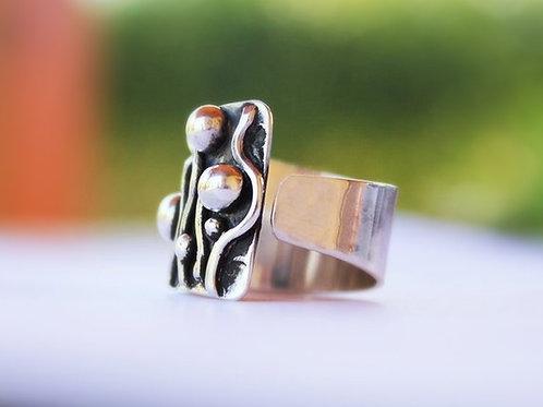 Ανοιχτό  ασημένιο δαχτυλίδι D54