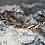 Thumbnail: Ανδρικό βραχιόλι με μίξη μετάλλων   AB19