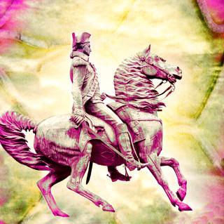 Washington Circle Pink 1261