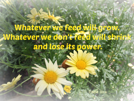 We Are Alive to What We Are Feeding