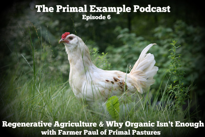 PEP 006: Regenerative Agriculture with Farmer Paul of Primal Pastures