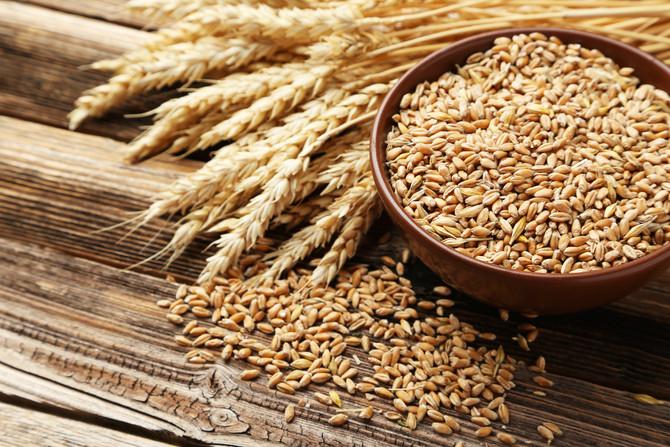 Wheat/Autoimmunity