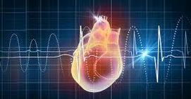 cardiology .jpg
