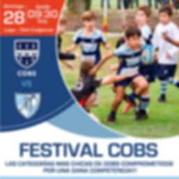 Festival Cobs.jpg