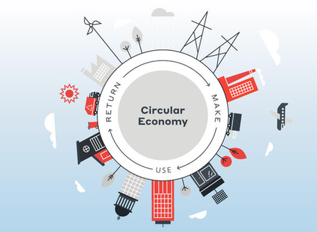 A economia circular dos alimentos – construindo um sistema menos linear