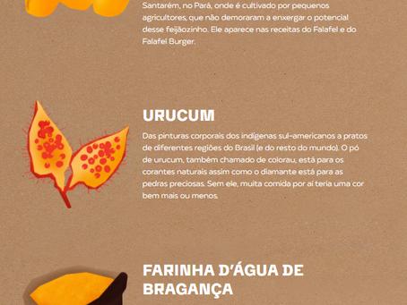 Startup da Semana: Ingredientes Brasileiros