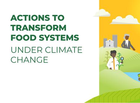 Transformando o Food System: é possível?
