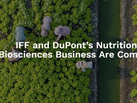 Maior empresa especializada em ingredientes do mundo pode resultar da fusão entre IFF e DuPont