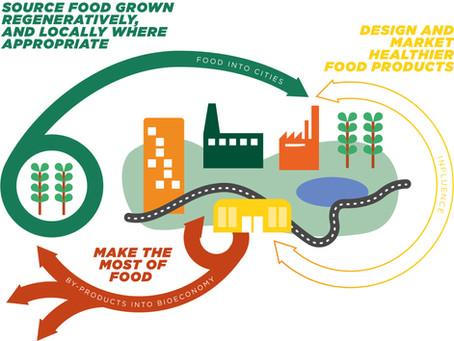 A economia circular dos alimentos – como construir um sistema alimentar menos linear