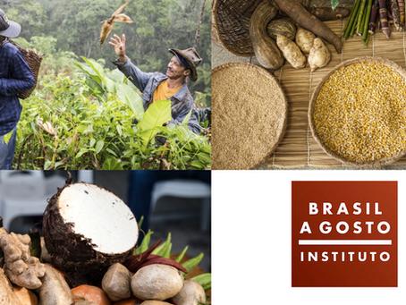 Instituto Brasil a Gosto lança 'Ação Vale do Ribeira'