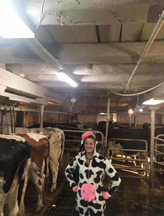 renee cow suit.jpg