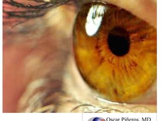 La CORNEA, maravilloso tejido ocular