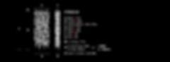 Schematics CT3321_4 final.png