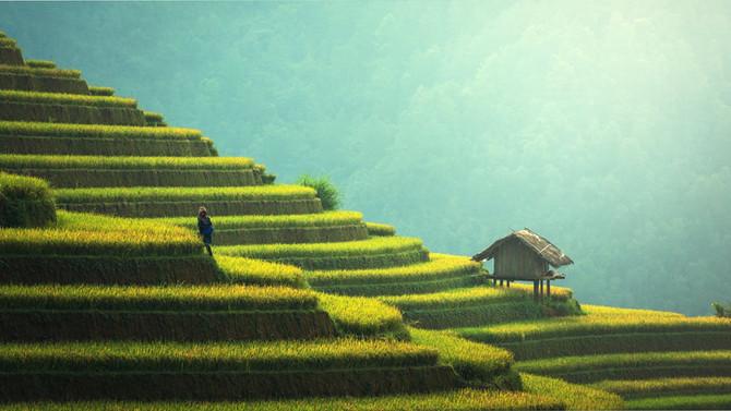 Plan de Viaje: Turismo en las Redes Sociales
