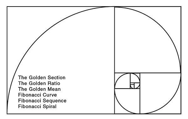 The Golden Section spiral curve mean seq