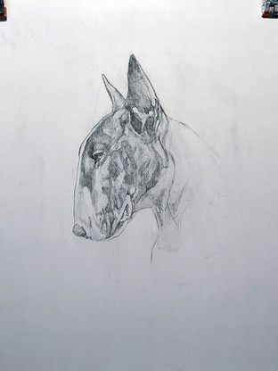 Pencil underdrawing - Learn how the image works, detail and tonal values