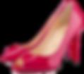 Zapatos Calzado Expo Sede Mayorista.png