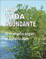 La Vida abundante, single cover.png