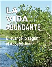 La Vida abundante, single cover.png