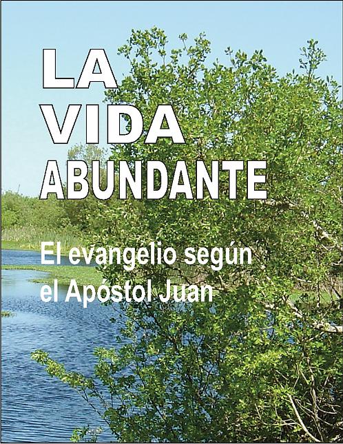 El evangelio de Juan                       (25 ejemplares)